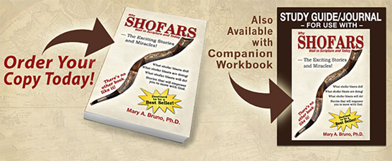 shofars_and_journal_banner.jpg