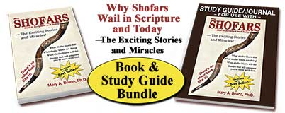 Why Shofars Wail Book & Study Guide Bundle